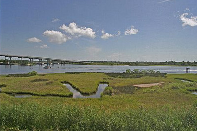 View of Marsh Along Intracoastal